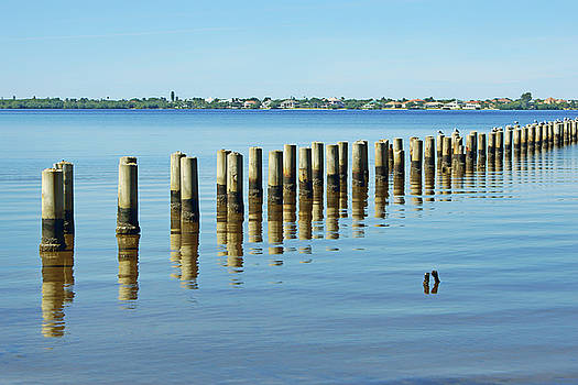 Nikolyn McDonald - Pilings - Caloosahatchee Estuary