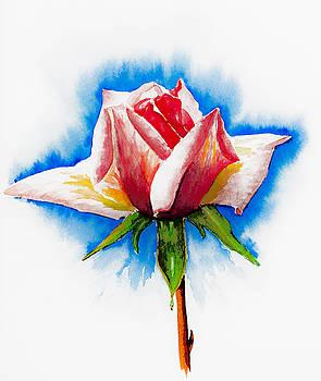 Svetlana Sewell - Pink Rose