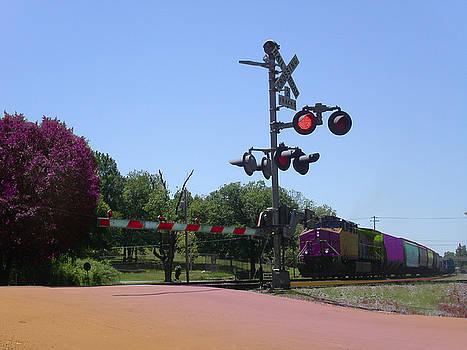 Anne Cameron Cutri - Rainbow Train Landscape