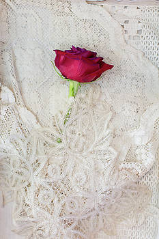 Susan Gary - Red Rose on Lace