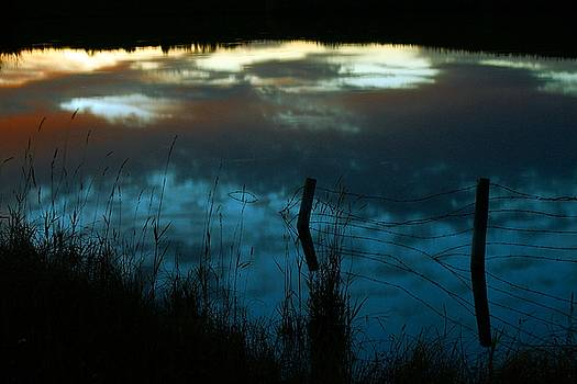 Mario Brenes Simon - Reflection of the sky in a pond