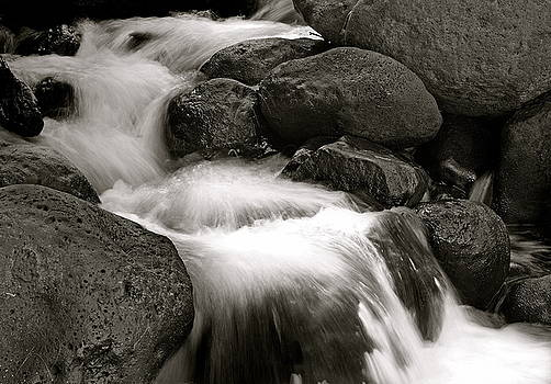 Michael Peychich - Rushing Waters