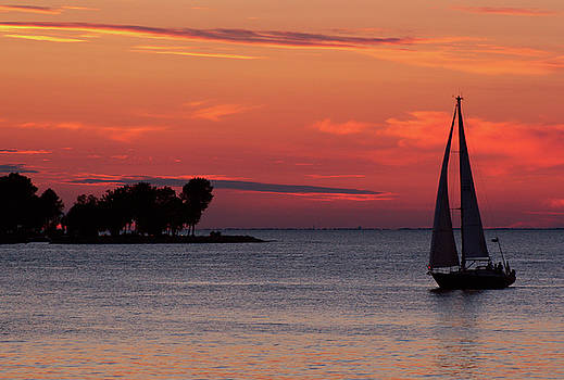 Joel Witmeyer - Sailing Home