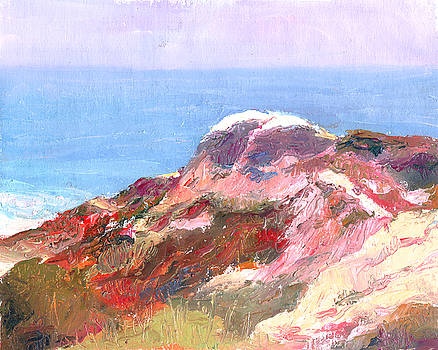 Timothy Chambers - San Clemente Overlook