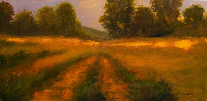 Jan Blencowe - September Field