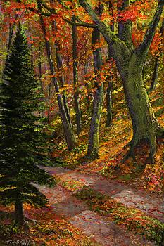 Frank Wilson - September Road