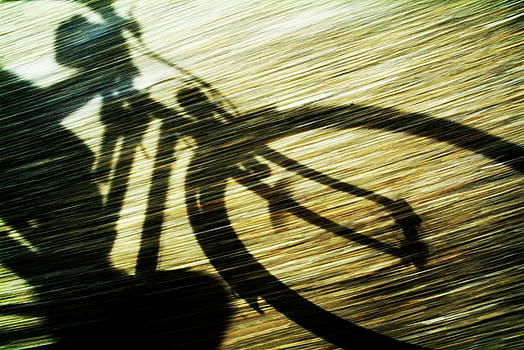 Sami Sarkis - Shadow of a person riding a bicycle