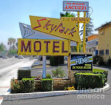 Gregory Dyer - Skylark Motel Vintage Sign