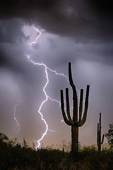 James BO Insogna - Sonoran Desert Monsoon Storming