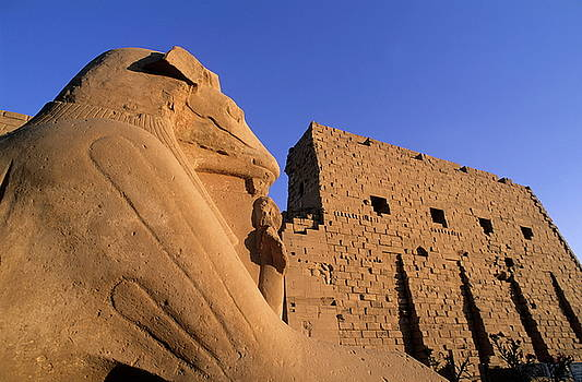 Sami Sarkis - Sphinx and the first pylon entrance at sunset at Karnak Temple