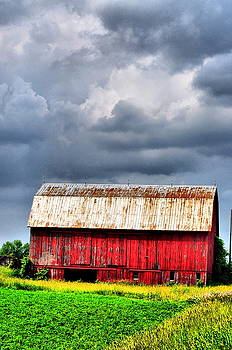 Emily Stauring - Stormy Red