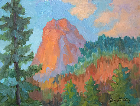 Diane McClary - Sunset on Lily Rock