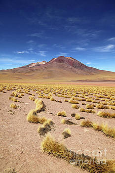 James Brunker - Tatio Volcano and High Altitude Desert Chile