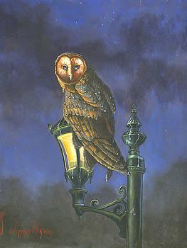 Jeff Brimley - The Night Watch