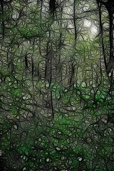 LAWRENCE CHRISTOPHER - THOREAU WOODS FRACTAL