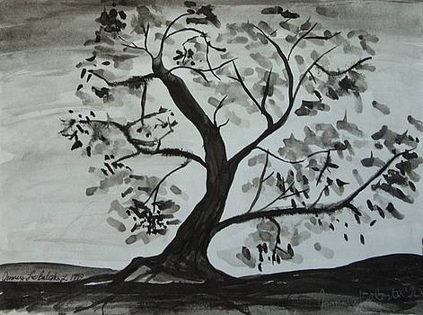 Jamey Balester - Tree Ink Wash