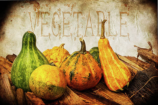 Angela Doelling AD DESIGN Photo and PhotoArt - Vegetable II