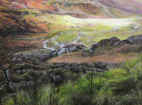 Harry Robertson - View down the valley in Snowdonia.