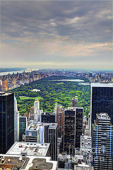 Wayne Moran - View From the Top of The Rock Rockefeller Center NYC II