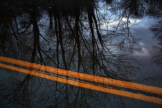 Anne Babineau - wake of the flood