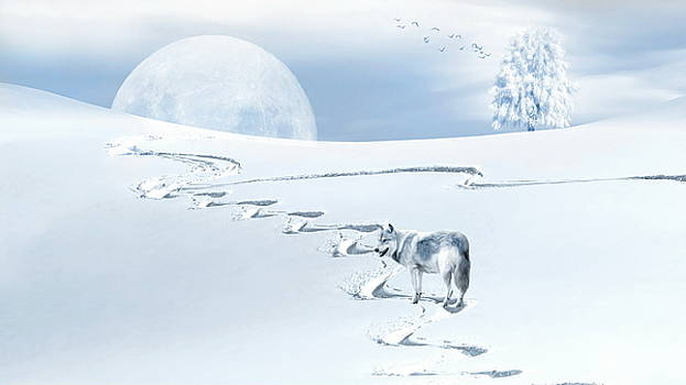 Andrea Kollo - Winter Wonderland - Wolf