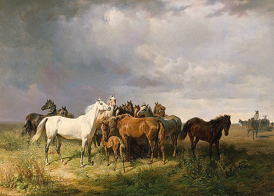 Horses in the Puszta Print by Franz Adam