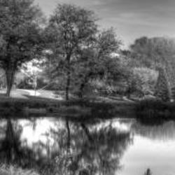Dreaming in black and white PANORAMIC IMAGES ONLY Art Competition