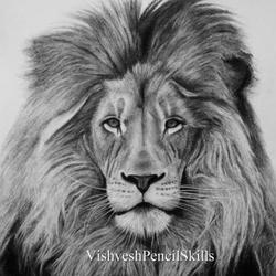 Lion drawing - pencil and color pencil Art Competition