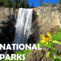 National Parks Waterfalls Art Competition