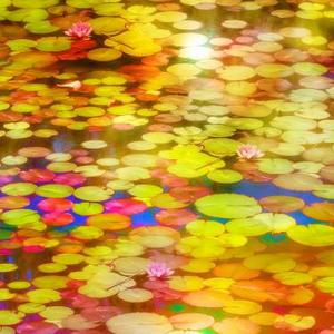 Abstract Waterlilies Art Competition