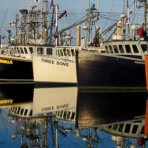 Docked Commercial Fishing Boats  Art Competition
