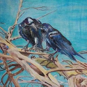 Starlings Crows Raven Blackbirds  Art Competition