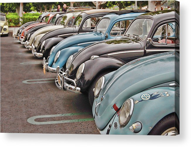 Vw Acrylic Print featuring the photograph Bugs by Bill Dutting