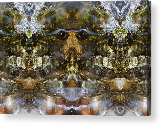 Ganesh Acrylic Print featuring the photograph Ganesh by Shawn Young