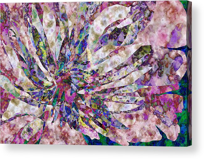 Flower Acrylic Print featuring the digital art Peony Burst by Gae Helton
