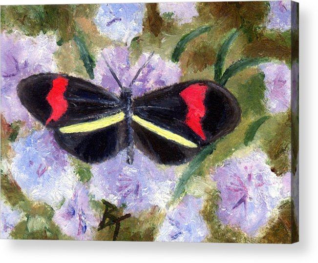 Butterfly Acrylic Print featuring the painting Butterfly Aceo by Brenda Thour