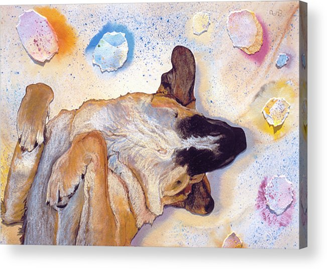 Sleeping Dog Acrylic Print featuring the painting Dog Dreams by Pat Saunders-White