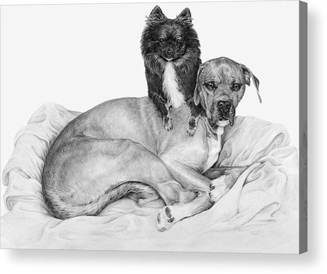 Dog Acrylic Print featuring the drawing A Shoulder To Lean On by Laurie McGinley