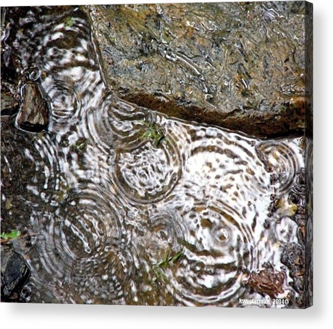 Rain Acrylic Print featuring the photograph Circles Of Water by Kenna Westerman