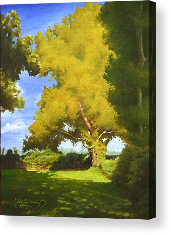 Sycamore Tree Acrylic Print featuring the painting Sycamore by Gary Hernandez