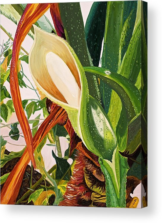 Floral Acrylic Print featuring the painting Blooming Philodendron Tree After Rain by Sodi Griffin