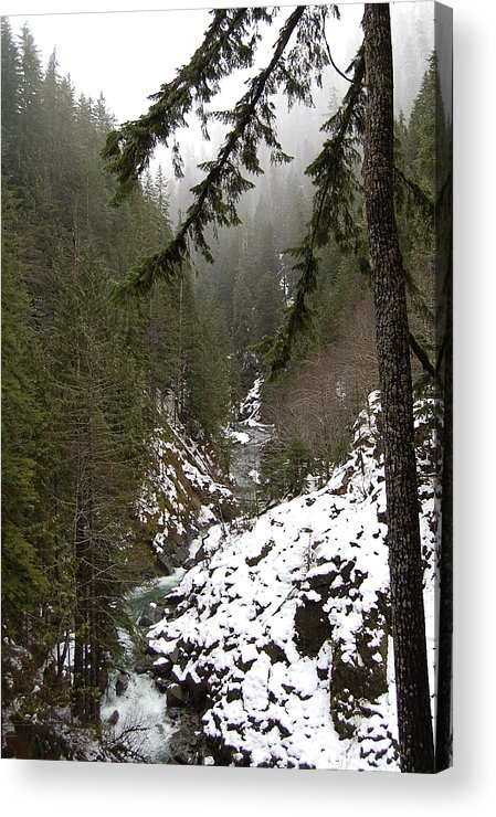 Mountain Acrylic Print featuring the photograph Winter by J D Banks