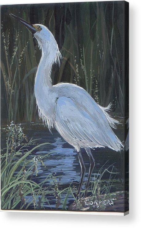 Egret Acrylic Print featuring the painting Egret by Peggy Conyers