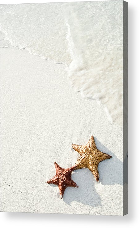 Vertical Acrylic Print featuring the photograph Starfish On Tropical Beach by Mehmed Zelkovic