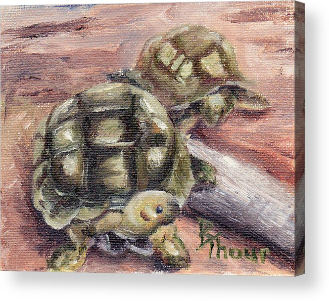 Turtle Acrylic Print featuring the painting Turtle Friends by Brenda Thour