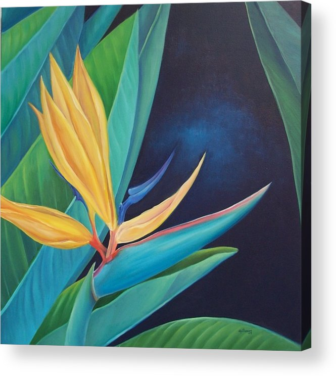 Flower Acrylic Print featuring the painting Bird Of Paradise by Elsa Gallegos