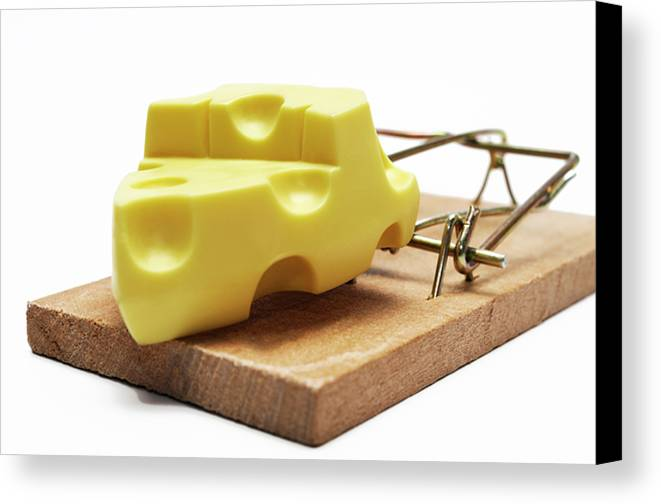 Food And Drink Canvas Print featuring the photograph Piece Of Cheese In Mouse Trap by Sami Sarkis