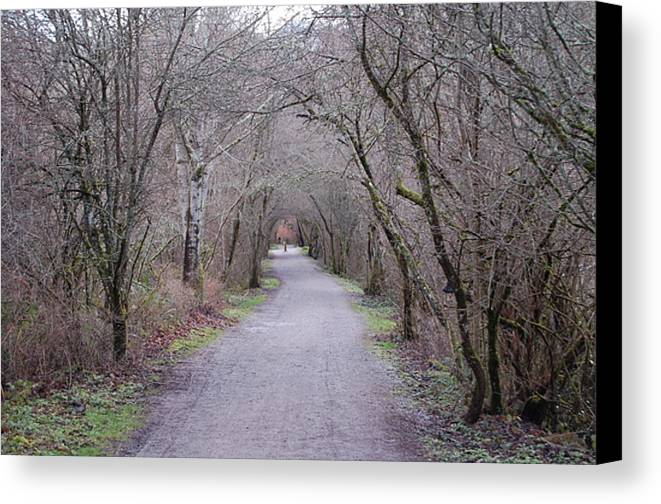 Nature Canvas Print featuring the photograph Trail Tunnel by J D Banks