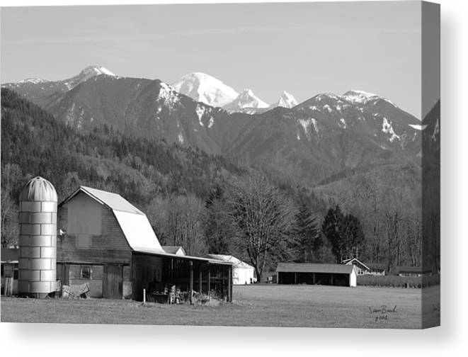Black Canvas Print featuring the photograph Mt. Baker Wine Country by J D Banks