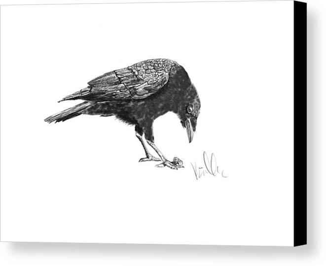 Crow Canvas Print featuring the painting Caw Of The Wild by Barb Kirpluk